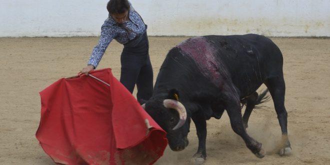 Intensa preparación de Sotelo para actuar en Tepatitlán con Jerónimo y Saldívar (*Fotos*)