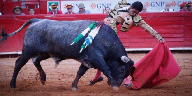 IZQUIERDA DE ORO hace vibrar la PLAZA MÉXICO; borda el toreo Héctor Gutiérrez con novillo de INDULTO (*Fotos*)