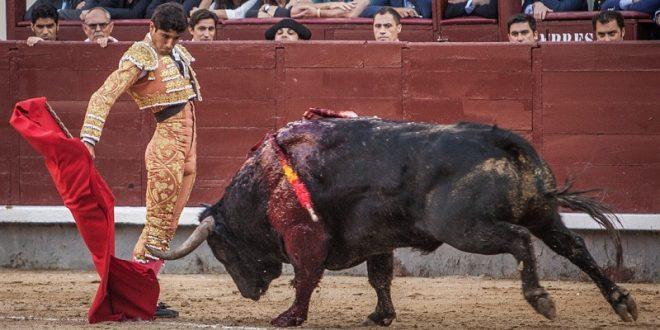 Corta Adame oreja en LAS VENTAS de MADRID