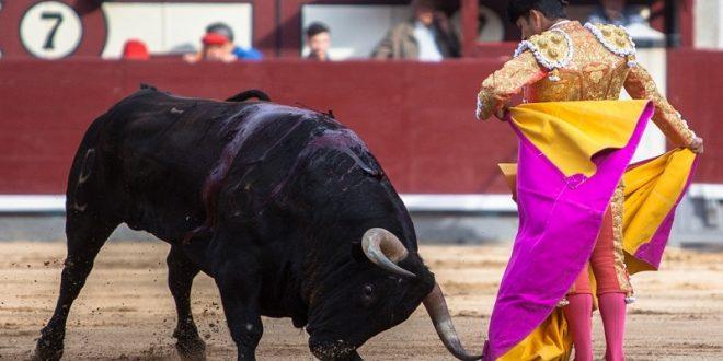 Apéndice a Adame, en Las Ventas
