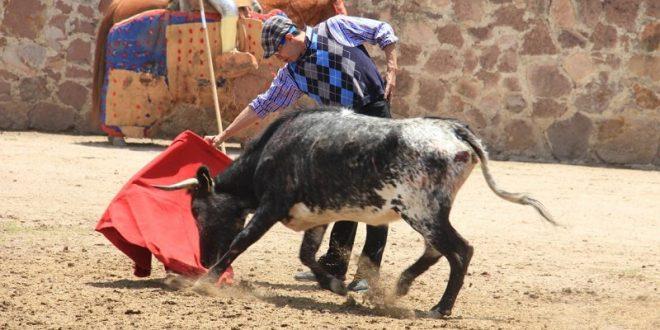 'El toreo es de resistencia, no de velocidad': Juan Luis Silis