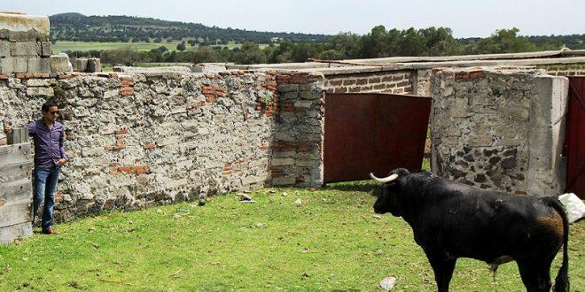 Todos salen a hombros en San Pablo Zintlaltepec