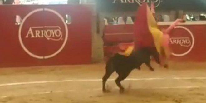 Sufre Diego Alberto Alarcón 'bautizo de sangre' tras actuar como sobresaliente en Arroyo (*Parte médico*)