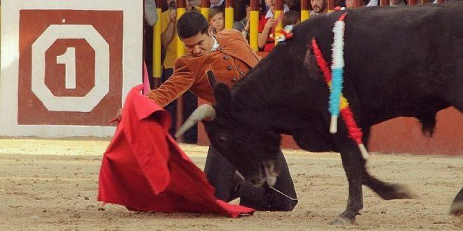 Debuta mexicano Joel Castañeda el día 17, en Algete, Madrid