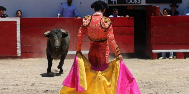 Desbordan afición en San Miguel de Allende