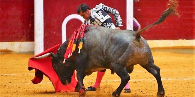 Adame, silencio en su lote en Logroño