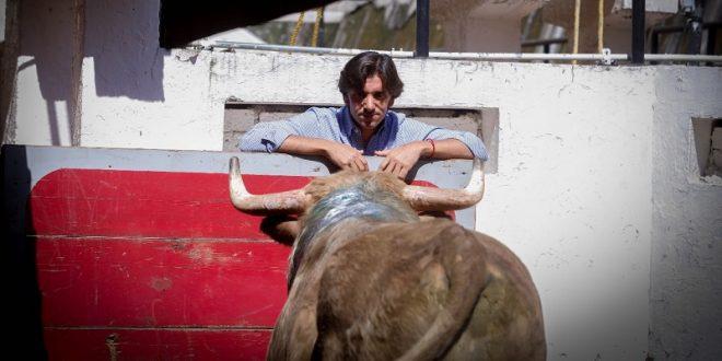 Visita Ventura al toro indultado