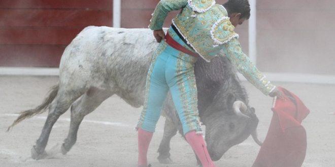 Solitario apéndice en Tlaxcala