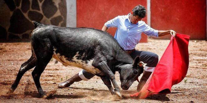 Silveti, de tienta en Marrón (*Fotos*)