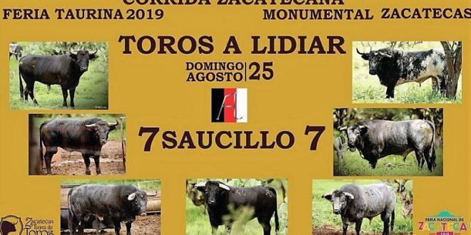 El Saucillo, listo para Zacatecas