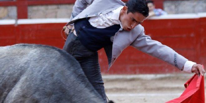 Darán vacadas de oportunidad en Morelia