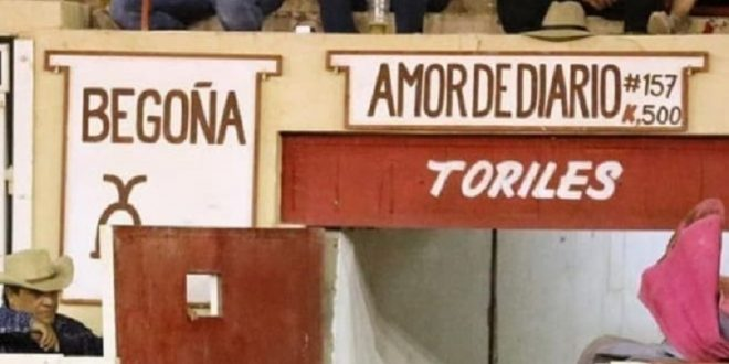 INDULTAN gran toro de BEGOÑA en CD. Juárez; Sergio Flores, faena cumbre