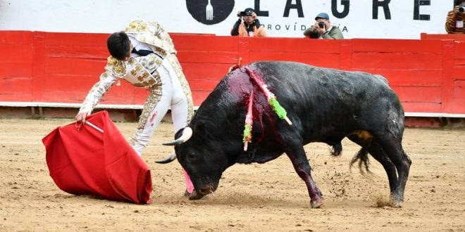 Detalles, en la novillada de Guadalajara
