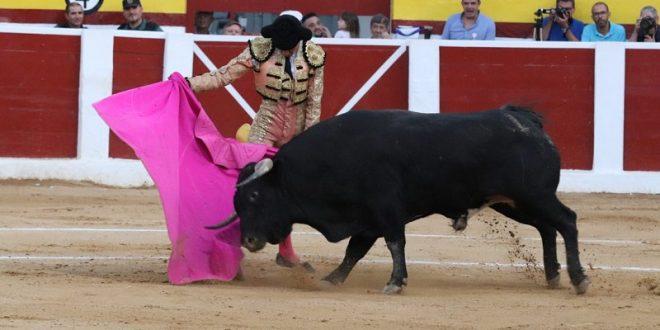 Le gusta a Héctor Gutiérrez la bravura con clase