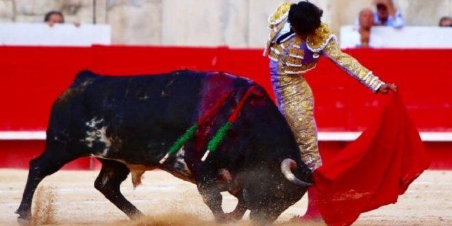 Luis David, esforzado y muy torero, en Nimes