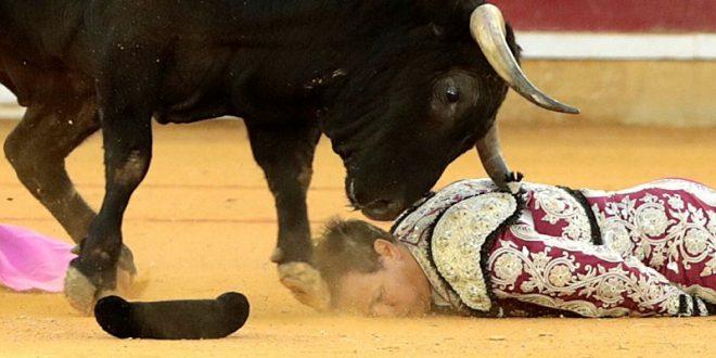 'Ha entrado muerto': Enrique Ponce