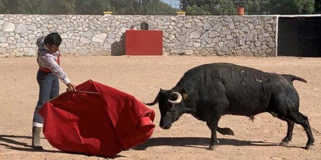 Lidia Christian Ortega un semental en la ganadería La Alejandría
