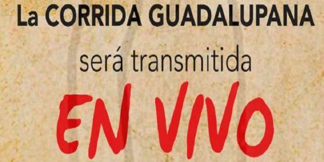 La Corrida Guadalupana de la México, en vivo a través de UNICABLE