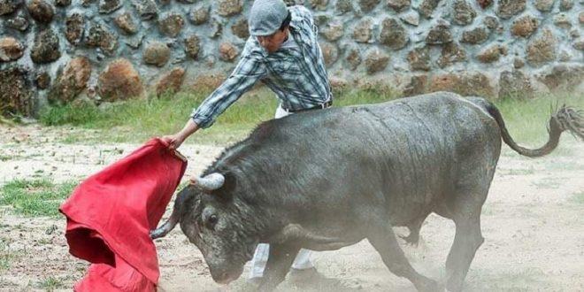 LUIS CONRADO interesa en Perú; lo apodera allá David Carrasco