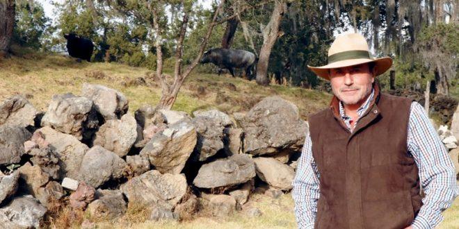 El toro bravo debe morir dignamente en la plaza: Marco Antonio González