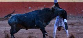 Cornada de dos trayectorias, a miembro de los Recortadores Españoles