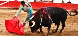 Repite GERARDO RIVERA este domingo en Guadalajara, tras triunfo del fin de semana