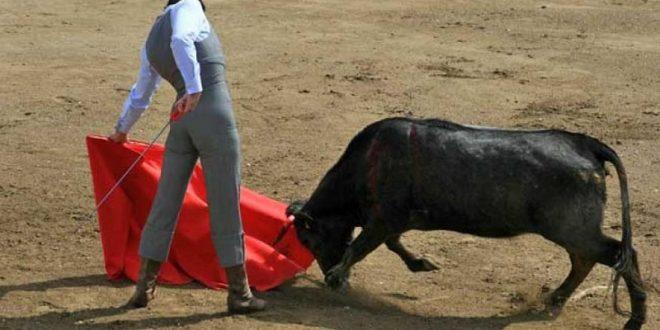 Autoriza Andalucía tentaderos