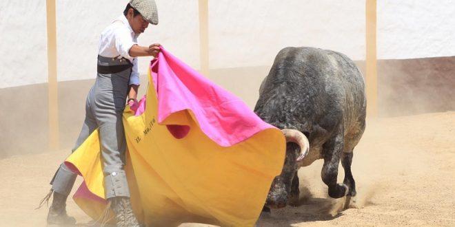 Lidia 'El Mojito' serio toro de Antonio de Haro