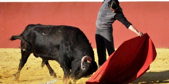 El diestro luso MARIO VIZEU Coelho, derecho como el TORO y el TEQUILA (*Fotos*)