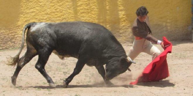 Francisco Martínez se somete a intensa preparación