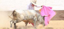 Tú les puedes a mis toros: De Haro