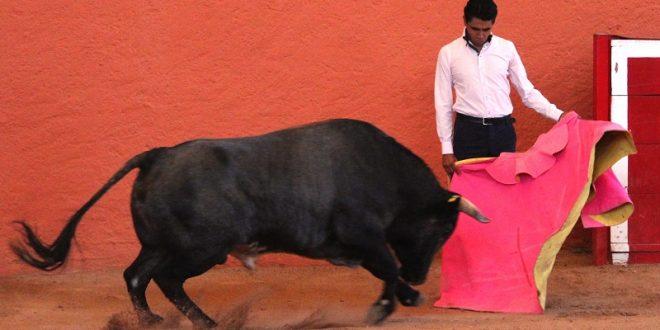 Reaparece Manuel González 'Montoyita'