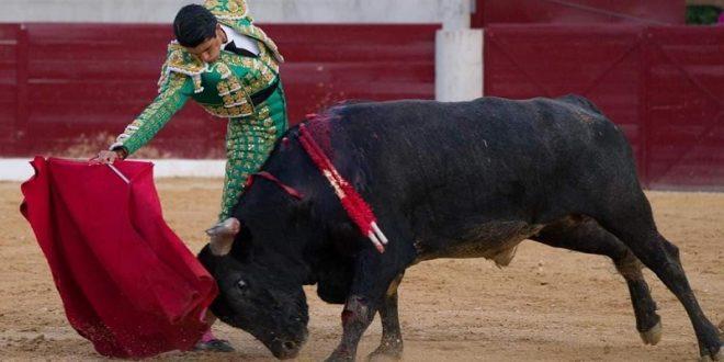 Ante Miura, malogra 'El Calita' faena con el acero; el día 27 dará una alternativa (*Fotos*)