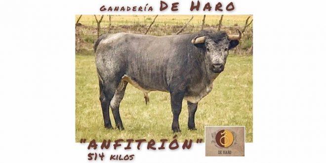 ¡Conozca el ganado que será lidiado hoy en Apizaco! (*Fotos del encierro*)