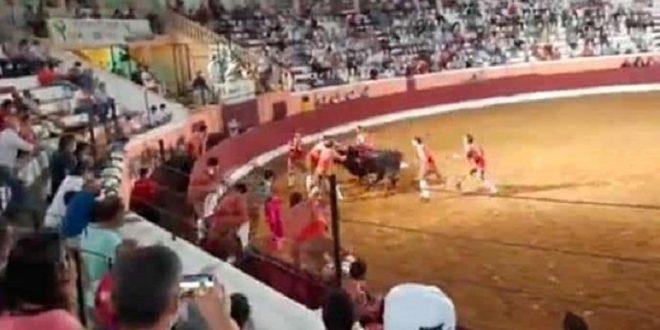 Accidentado festejo en Portugal deja doce forcados heridos, uno en coma inducido