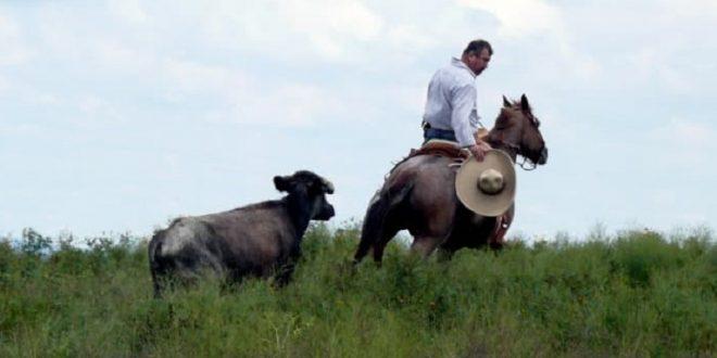 FOMENTAN afición en el campo bravo en la ganadería de LA CONCEPCIÓN (*Fotos*)
