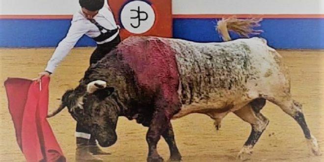Sufre dura lesión el novillero Juan Querencia