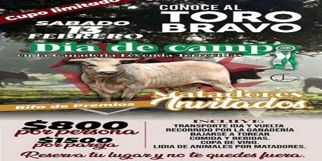 """El próximo 13 de febrero…""""Conoce al Toro Bravo"""", en Torrecilla"""