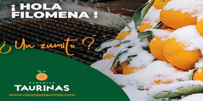 En España, 'Naranjas taurinas'