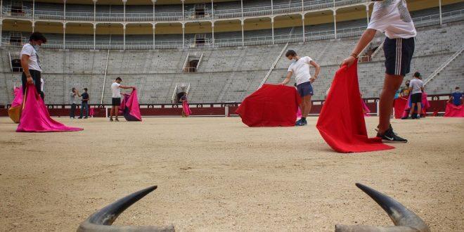 Paga la empresa de Madrid más de DOCE MDP anuales por escuela taurina