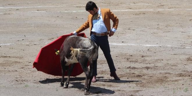 GRANDIOSA tarde campera en la ganadería de ZOTOLUCA (*Fotos*)