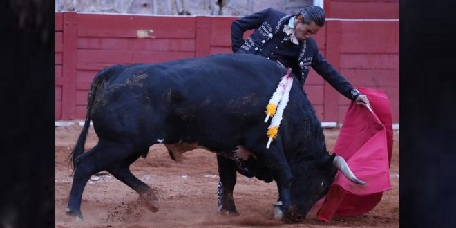 Malogra Silveti faena con la toledana en la vespertina de Zacatecas