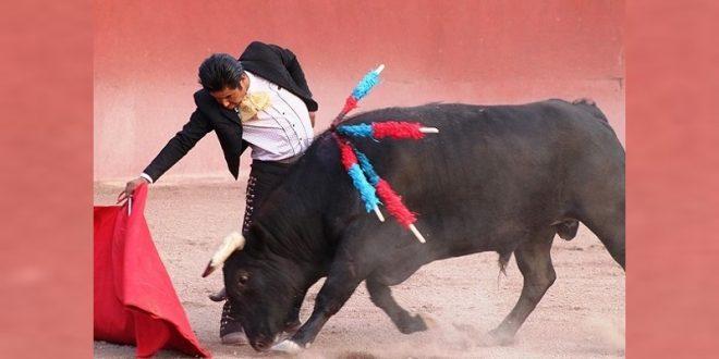 """""""El Rifao"""" lidia un toro de Zacatepec"""