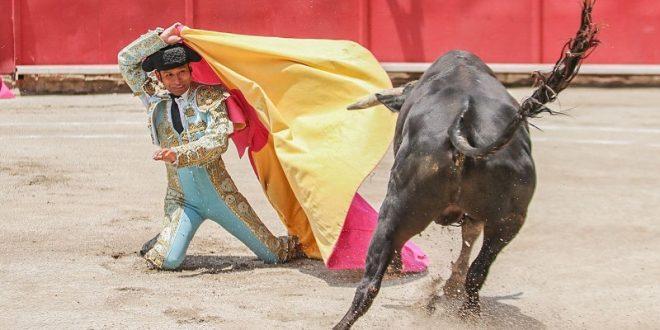 Desbordan afición en LOS IBELLES (*Fotos*)