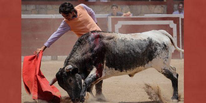 Patricio Ochoa se prepara fuerte para el día 14