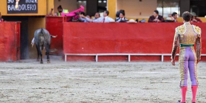 Indultan toro en Tijuana