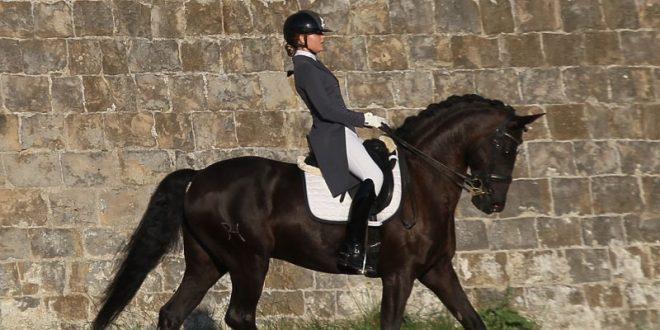 Triunfan caballos de HERMOSO DE MENDOZA fuera de plazas de toros (*Fotos*)