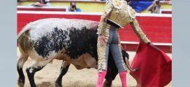 En Tijuana, protagonistmo del juez da al traste con el festejo