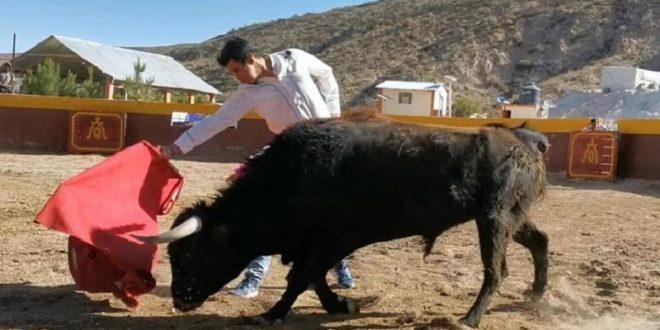 SILIS, en el campo bravo andino (*Fotos*)
